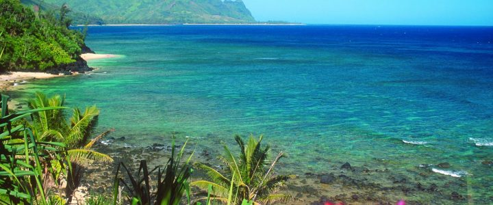 Discount Hawaii Tours Offers