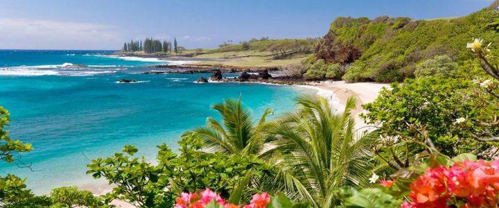 Hawaiian Luau Kalamaku Celebration